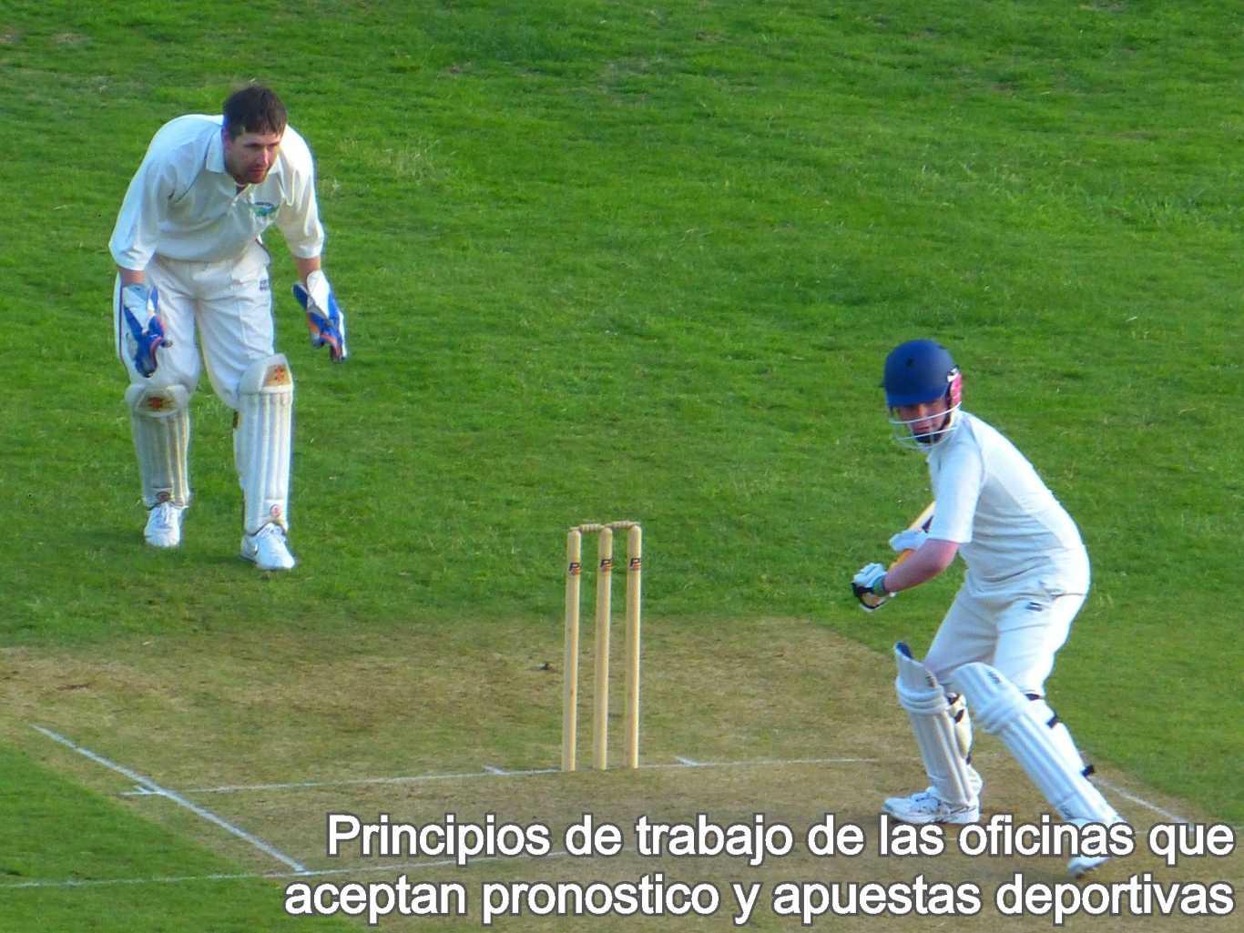 Principios de trabajo de las oficinas que aceptan pronostico y apuestas deportivas